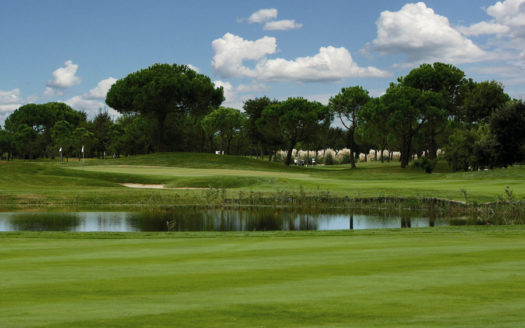Golf Club - Lake